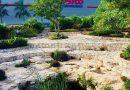 Cenote Ka Kutzal – El cenote del Costco