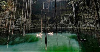 Cenote Secreto Maya – un tesoro escondido en la selva de Yucatán